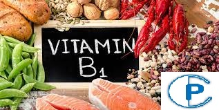 Best things to know about thiamin or vitamin B1